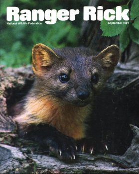 Ranger Rick Cover, September 1991.